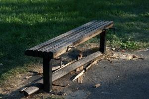 Sans surveillance, le vandalisme aura tôt fait d'achever la disparition du parc