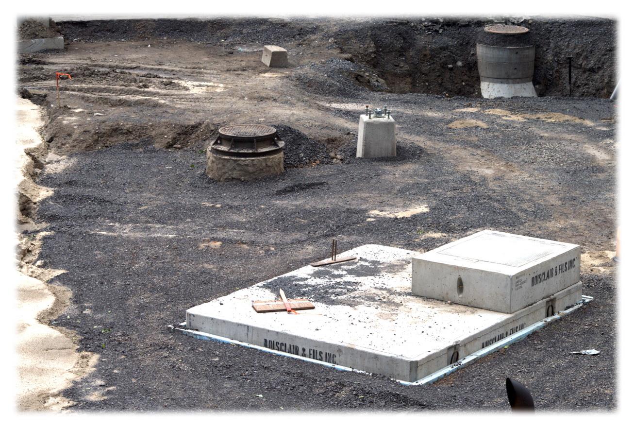 le parc morgan une terre en friche le journal de bord du parc morgan. Black Bedroom Furniture Sets. Home Design Ideas