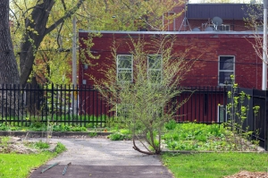 Que dire de l'entretien des clôtures du parc et de la végétation qui les longe?