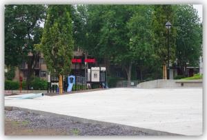 Pourquoi l'arrondissement mérite-t-il que ce parc soit ainsi voué aux pires décisions en matière de protection du patrimoine végétal?